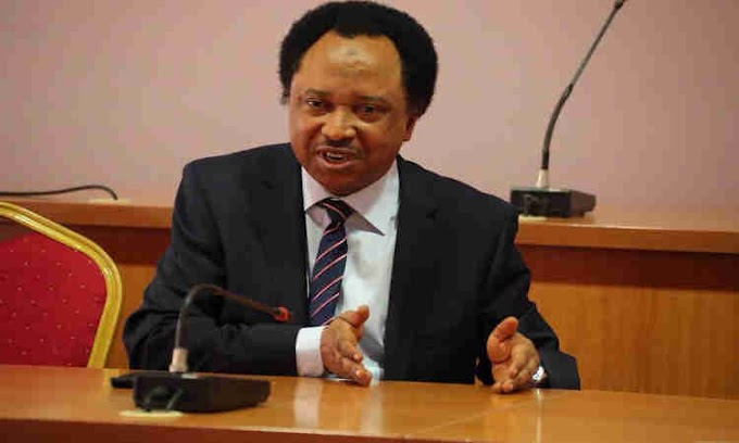 Army Has Case to Answer over Death of Police Officers, Says Shehu Sani