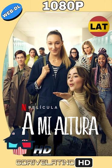 A Mi Altura (2019) NF WEB-DL 1080p Latino-Ingles MKV