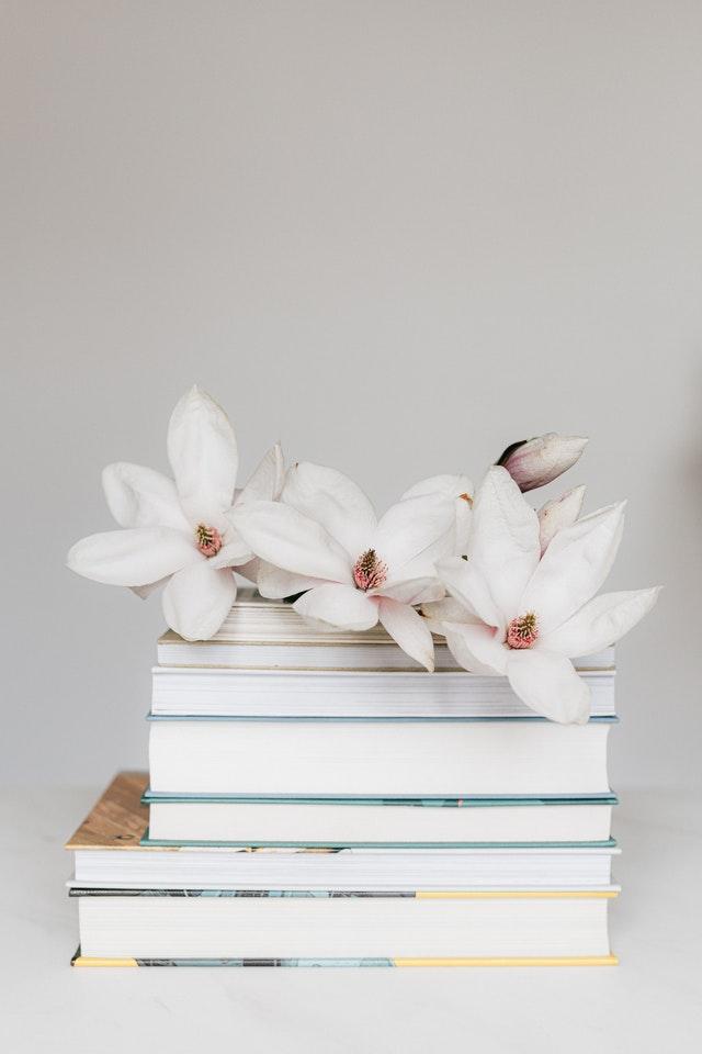 اقرأ كل يوم لتتعلم من الحياة