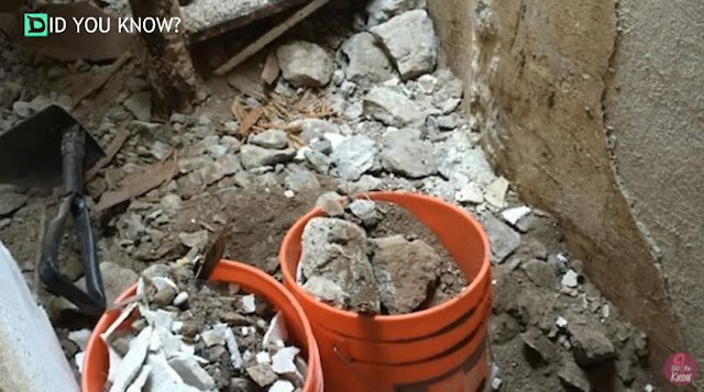 This Guy Had A Shocking Discovery After Digging The Ground!