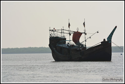 Nijhum Dwip Sea Beach, Virgin Island Sea Beach, Nijhum Island Hatia, Trip Navigation Bangladesh, Nijhum Dwip Travel Guide