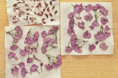 dried pressed flowers on tissue paper