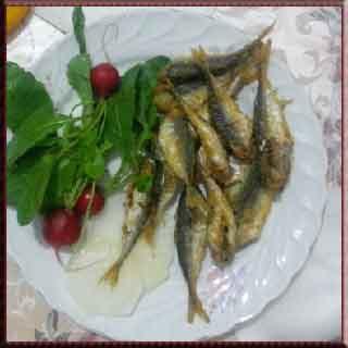 istavrit avı, istavrit balığı, istavrit tarifi, istavrit nasıl tutulur, istavrit nasıl pişirilir, istavrit fırında, istavrit tava, istavrit nasıl yapılır