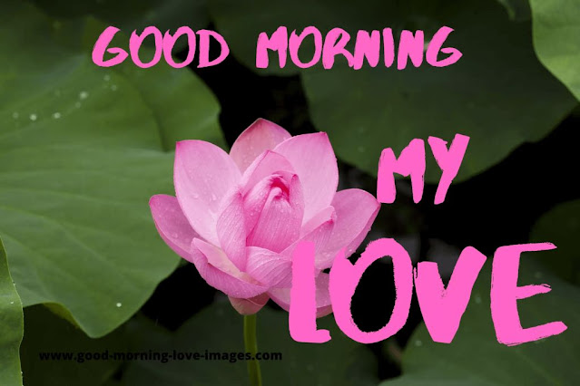 god morning my love