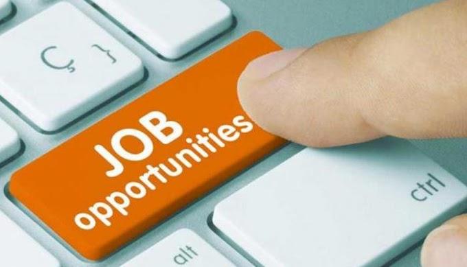 राजस्थान में बेरोजगारों के लिए राहत की खबर, अब इस विभाग में खाली पदों पर जल्द होगी भर्ती
