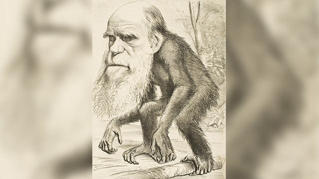 """Turquía borra la """"inapropiada"""" teoría de Darwin del currículo escolar"""
