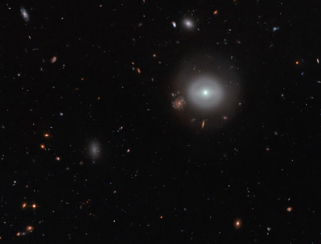 Hubble finds a lenticular galaxy standing out in the crowd