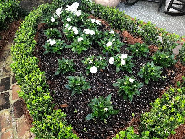 Acorn Cottage {Spring Plantings}