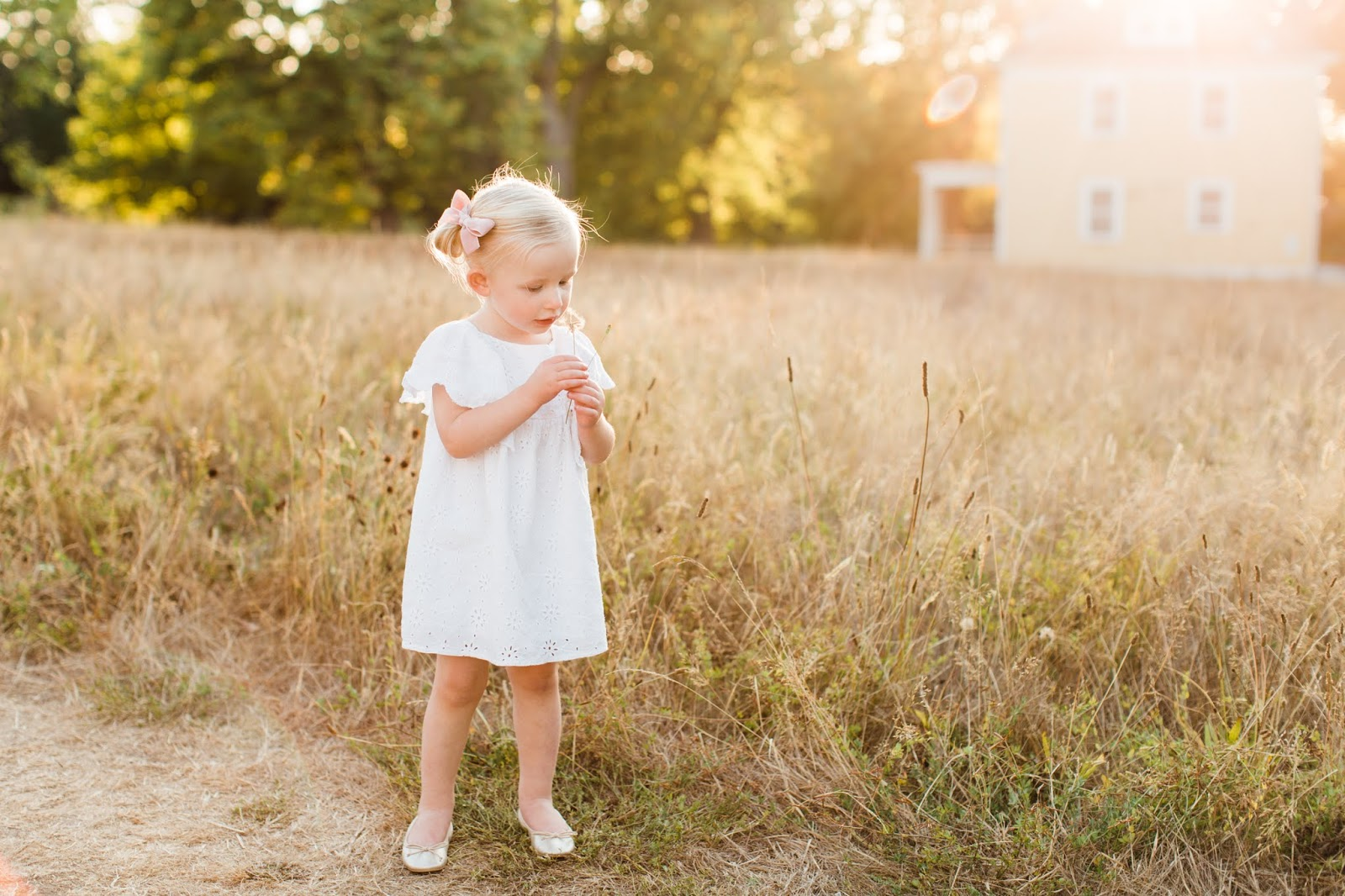 5 tips on family photos with a toddler