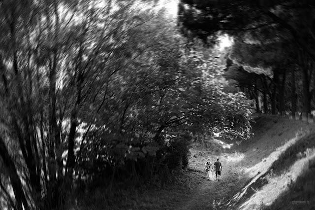 Passeggiata sulle rive del fiume Adige. Fotografia di Giovanni Battisti