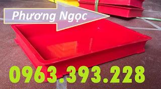 Khay nhựa đựng linh kiện, khay kích thước 300 x 208 x 42 mm, khay nhựa BL006 74915091_483317668949581_3916877944793858048_n