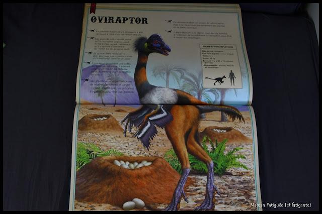 livre extraordinaire dinosaures