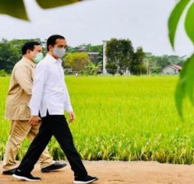 Jokowi Mundur atau Dimundurkan