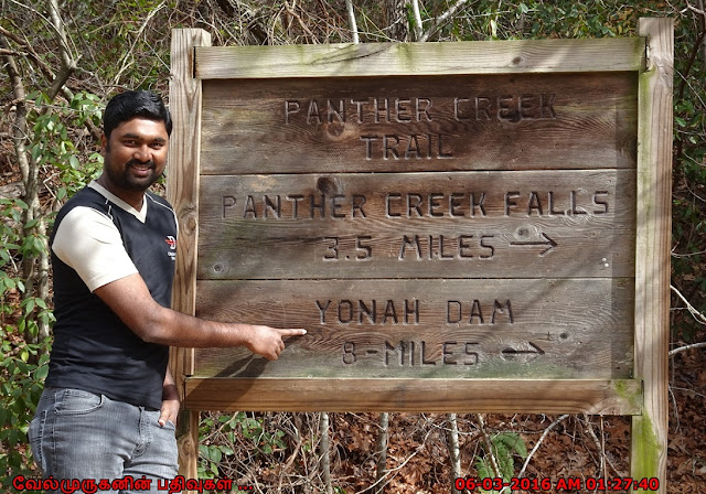 Panther Creek Trail to Yonah Dam