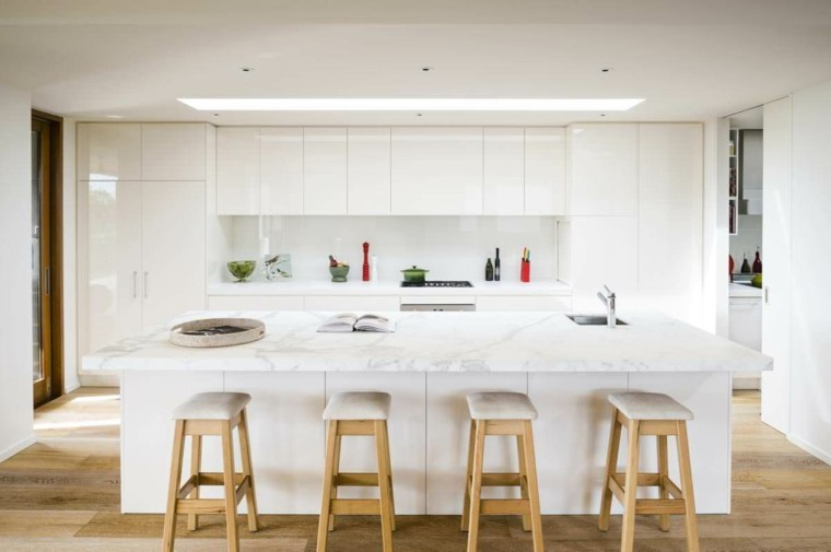 Modern Kitchen Remodel Pictures With Oak Cabinets Ideas 9