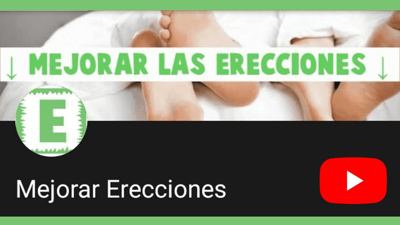 erección aleatoria durante el día d