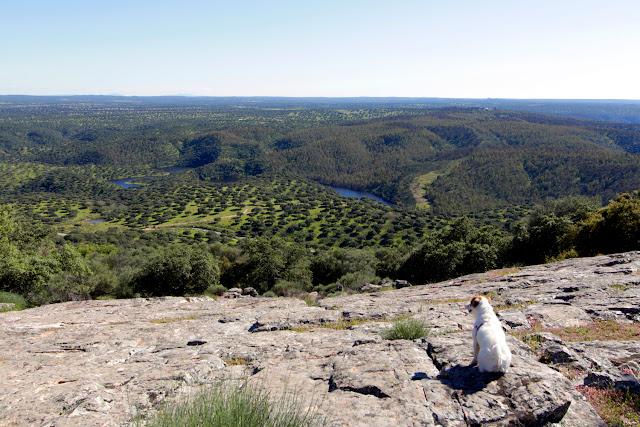 Amy mirando las dehesas de Extremadura en Monfragüe