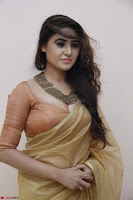 Sony Charistha in Lovely Brown Saree and Choli Spicy Pics ~  Exclusive 18.JPG