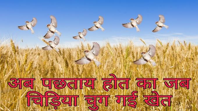 अब पछताए होत का जब चिड़िया चुग गई खेत | Ab Pachtaye hot ka jab Chidiya chug gai khet