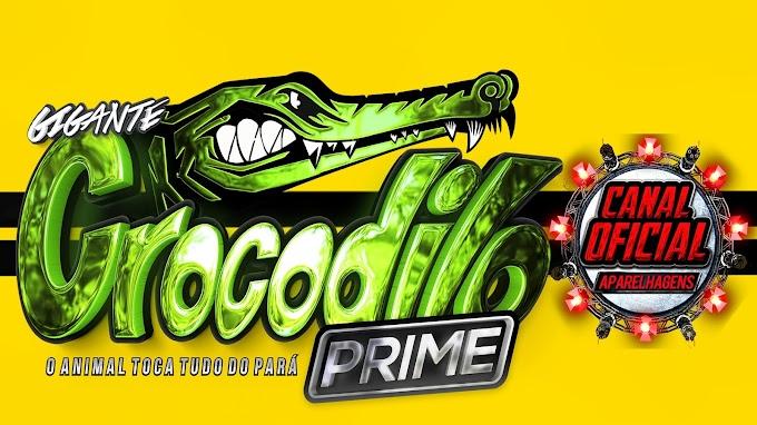 AO VIVO GIGANTE CROCODILO PRIME DJS GORDO & DINHO NO BENFICA 2021