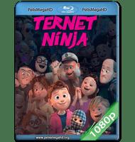 NINJA A CUADROS (2018) 1080P HD MKV ESPAÑOL LATINO