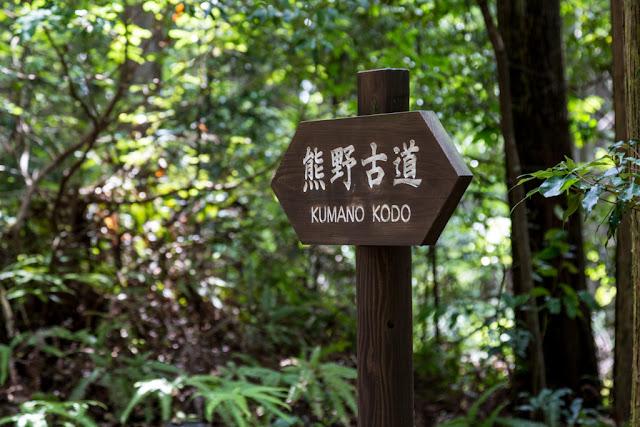 Kumano Kodo :: Canon EOS5D MkIII | ISO400 | Canon 24-105@105mm | f/5.6 | 1/50s
