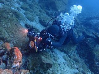 2021年9月13日の柏島ダイビング