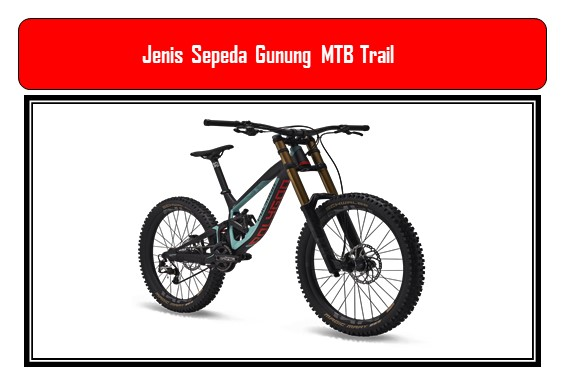 Jenis Sepeda Gunung MTB Trail