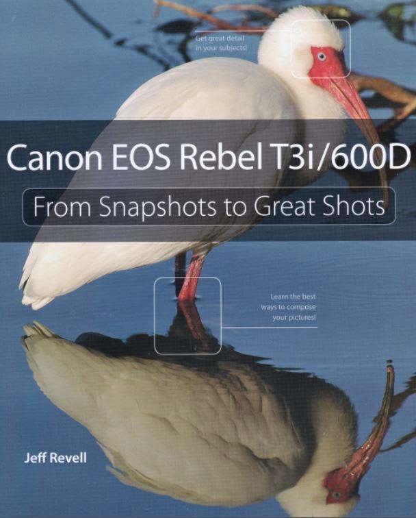 Canon Camera News 2019: Camera Book Recommendation: Canon EOS Rebel