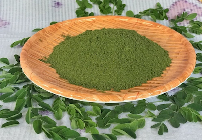 berbagai olahan masakan dari daun kelor yang berkhasiat.