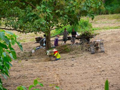 Kanchanaburi farmer