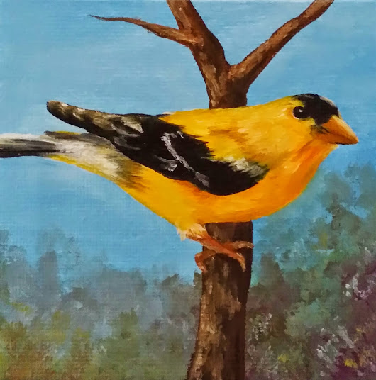 """American Golden Finch"""