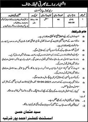 New Jobs in Pakistan Revenue Department Ahmedpur Sharqia Jobs 2021