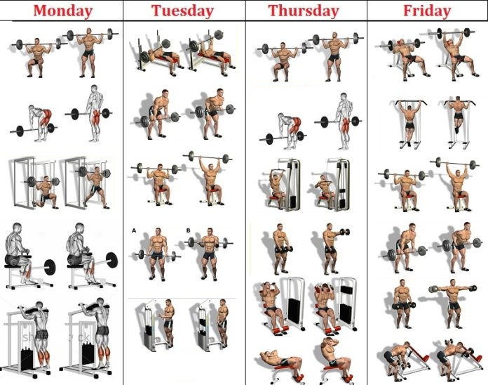 4 Day Muscle Split Routine Fitness Tips Lovers
