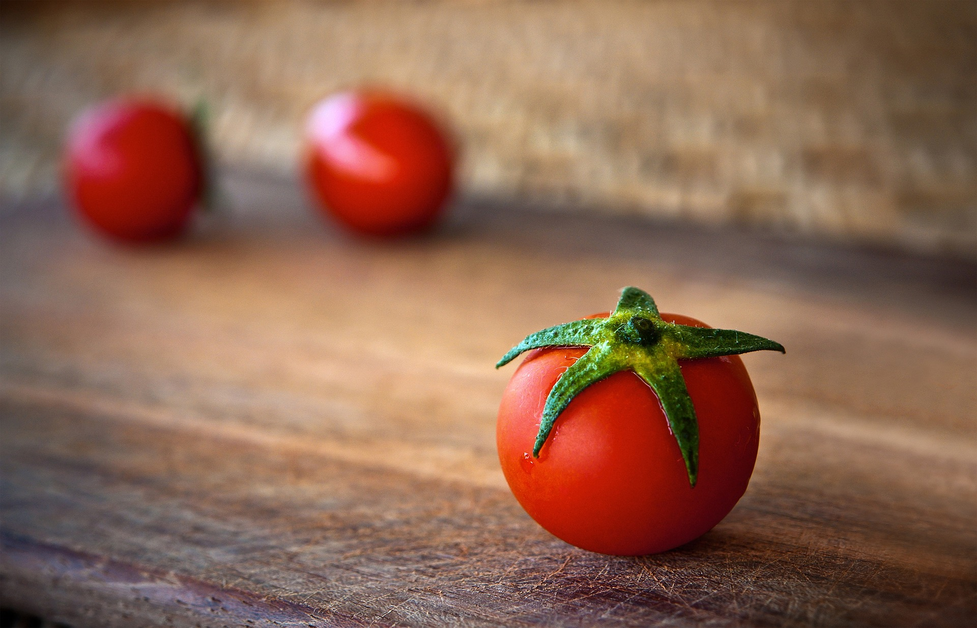 About Tomato Plant Care