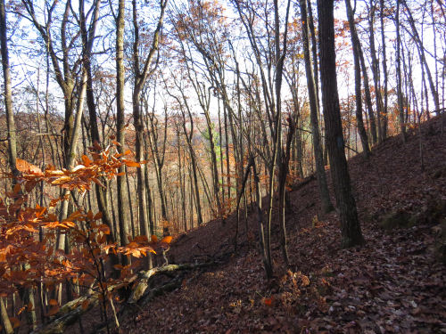 hilly trail