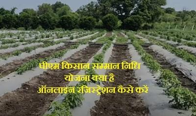 पीएम किसान सम्मान निधि योजना क्या है