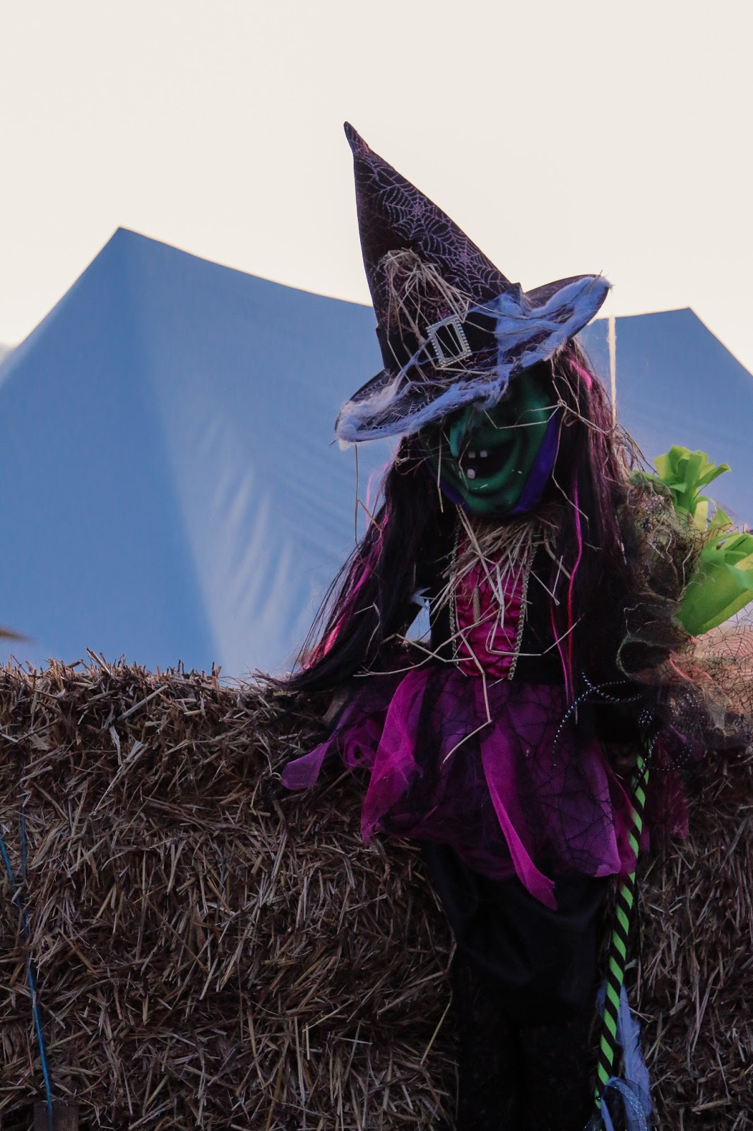 Close up of a witch doll in the hay maze at M&D's pumpkin festival