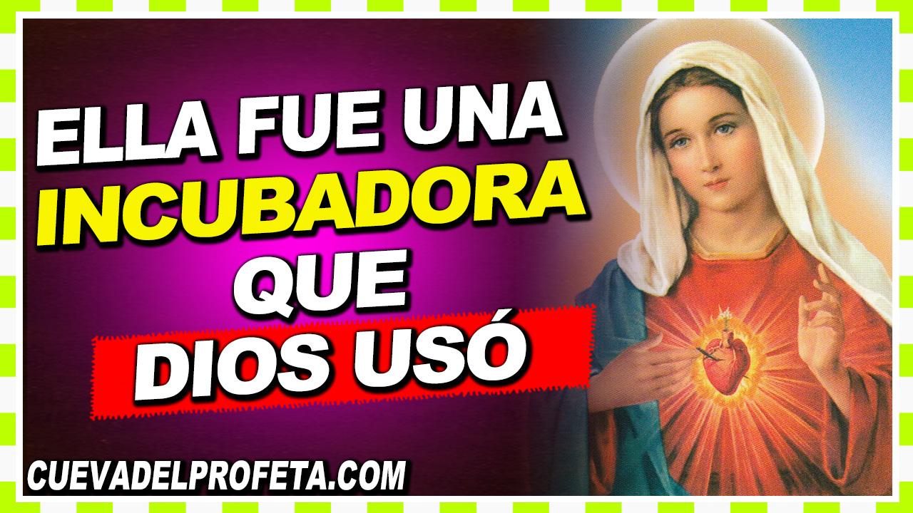 La Virgen María fue una incubadora que Dios usó - William Branham en Español