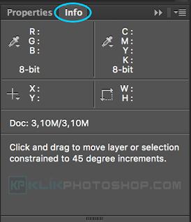 fungsi panel info photoshop