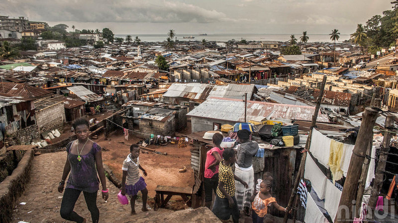 stalking a killer ebola and the hunt for its source sierra leone