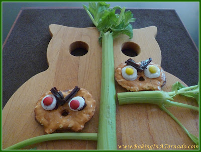 Angry Owl | www.BakingInATornado.com | #recipes #halloween