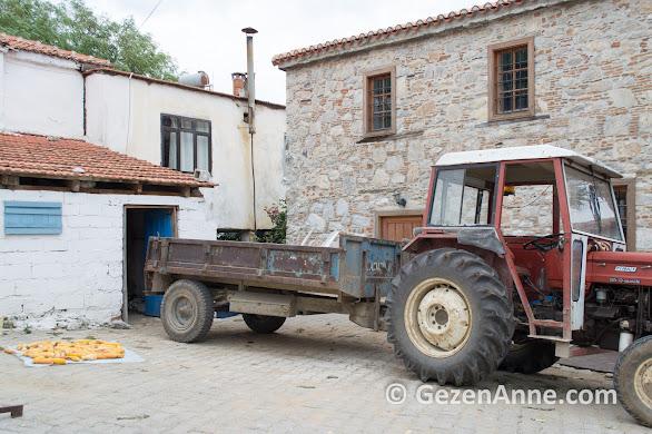 traktörü ile, mısırı ile bildik bir Anadolu köyü Bozüyük, Muğla