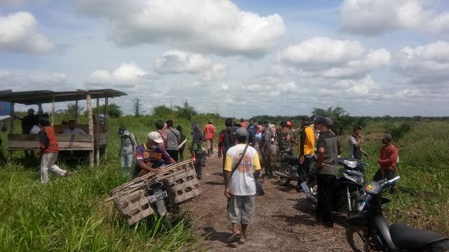 Ratusan Warga Patok Lahan HGU  PT. Alam Sari Lestari