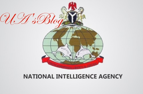 NIA Director Accused Of False Asset Declaration, Embezzlement Of Public Funds