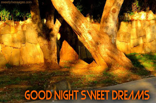 good night sweet dreams pictures