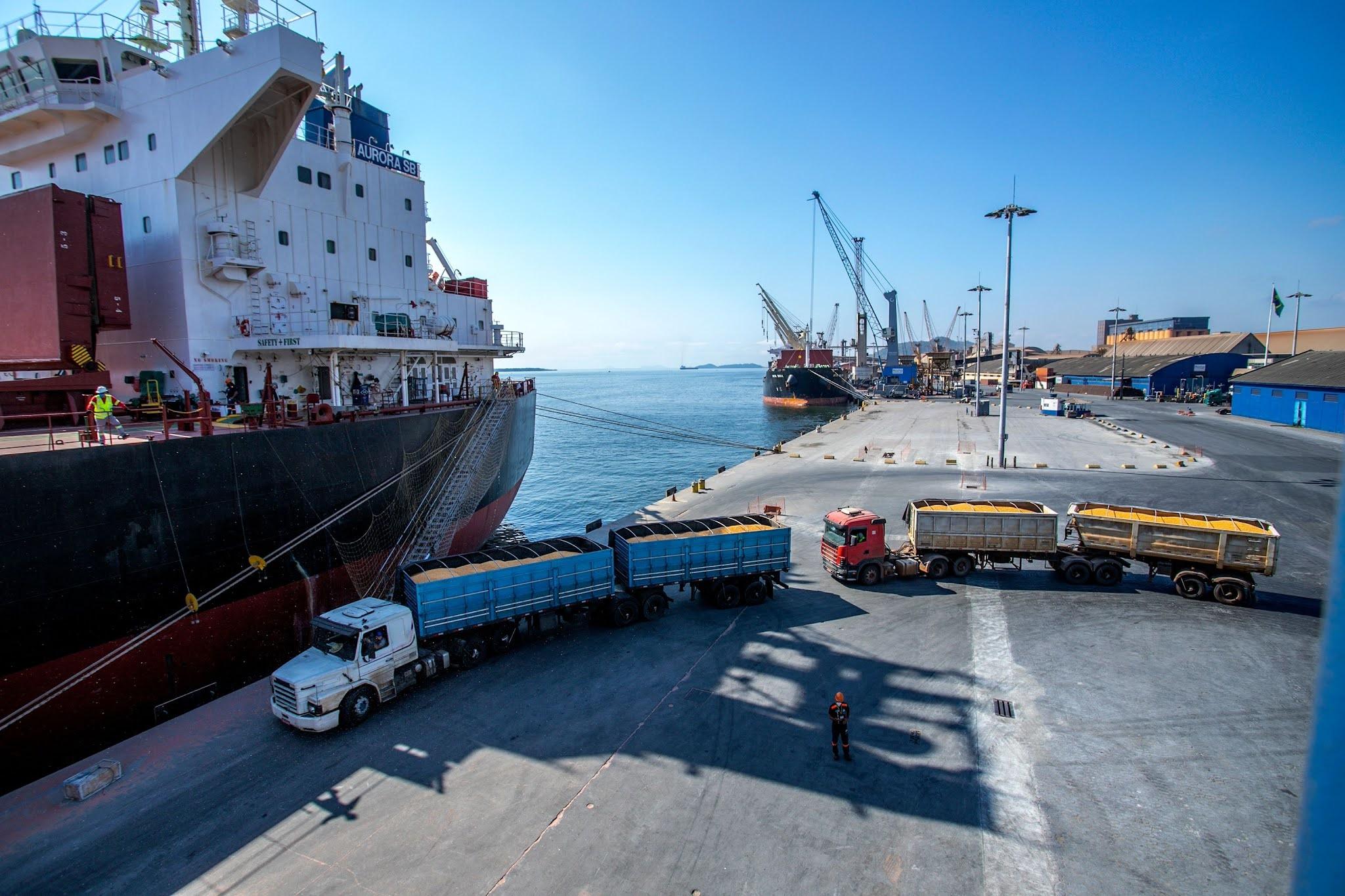 Porto de Paranaguá recebe outro navio carregado de milho argentino