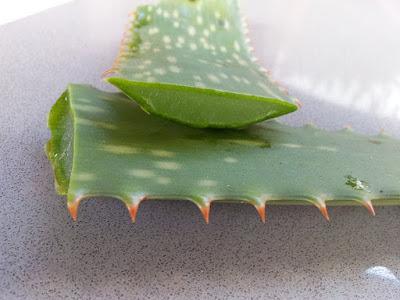 Benefits of Drinking Aloe Vera Juice :14 Benefits For Health