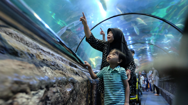 Anak-anak sudah boleh ke Seaword dan Samudra Ancol November 2020