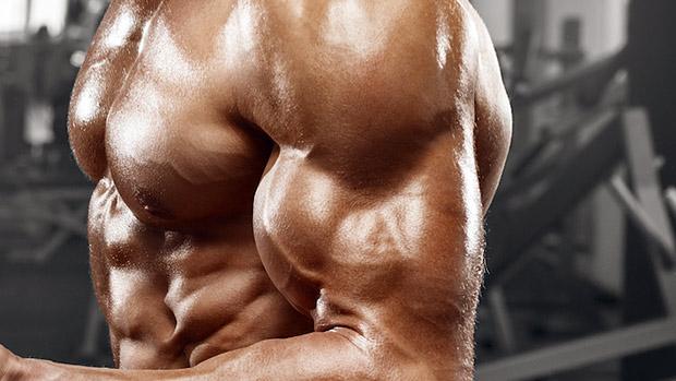 Guía para hacer tu rutina básica de bíceps